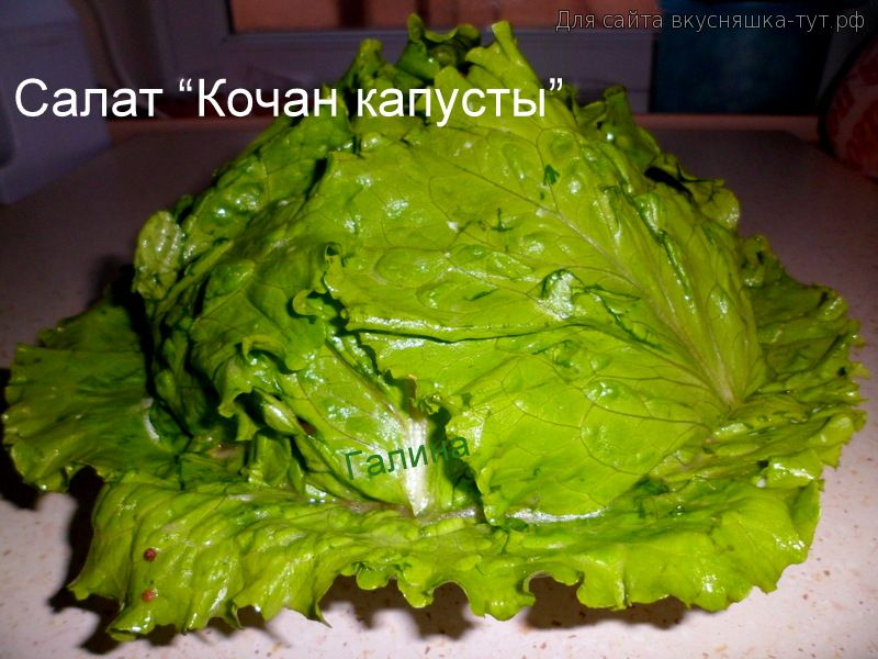 Кочанный салат это какой